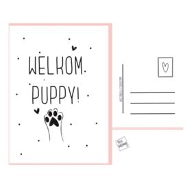 Welkom puppy postkaartje