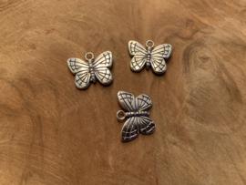 Vlinder bedeltje gestreept