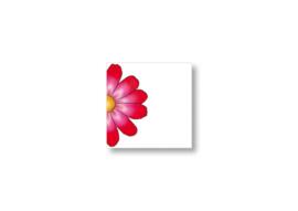 Halve bloem || Cadeaukaartje