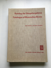 Catalogue of Mammalian Brains |Katalog der Säugetiergehirne |Hersenen van Zoogdieren|Brauer |Kurt Wilfried Schober|1970