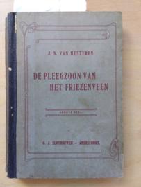 De pleegzoon van het Friezenveen | J.N. van Hesteren | 1e deel | 1906