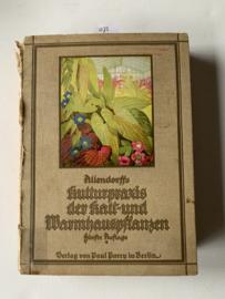 Allendorffs Kulturpraxis der Kalt- und Warmhauspflanzen. Handbuch der Topfpflanzenkultur für Erwerbs- und Privatgärtner |  C. Bonstedt | 1927 | Duitstalig | 5e druk | Uitgever: Verlag von Paul Barey Berlin |