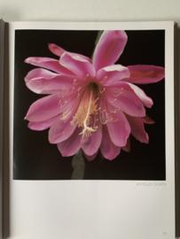 Epiphyllum - The Splendor of Leaf Cacti   Marga Leue   1987   Uitgever: Marga Leue, Haunetal   Duits-/ Engelstalig  