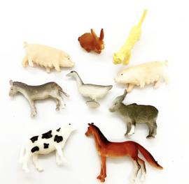 Boerderij dieren