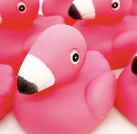 uitdeel flamingo's