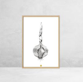 Poster Botanische Illustratie -  Ui