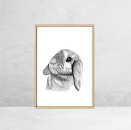 Poster Bos Dieren -  Illustratie Konijn