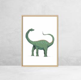 Poster Dinosauriërs -  Illustratie Diplodocus