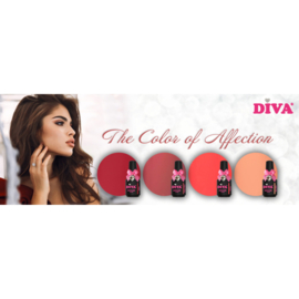 Diva Gellak The Color Of Afflection Collection