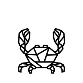 Meerdere kleuren: krab klein