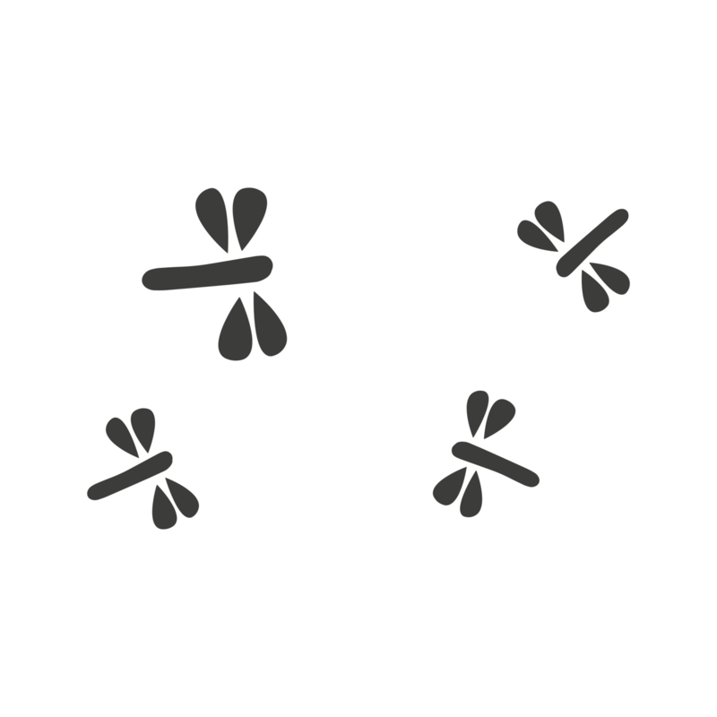 Meerdere kleuren: Libelles  (9 stuks)