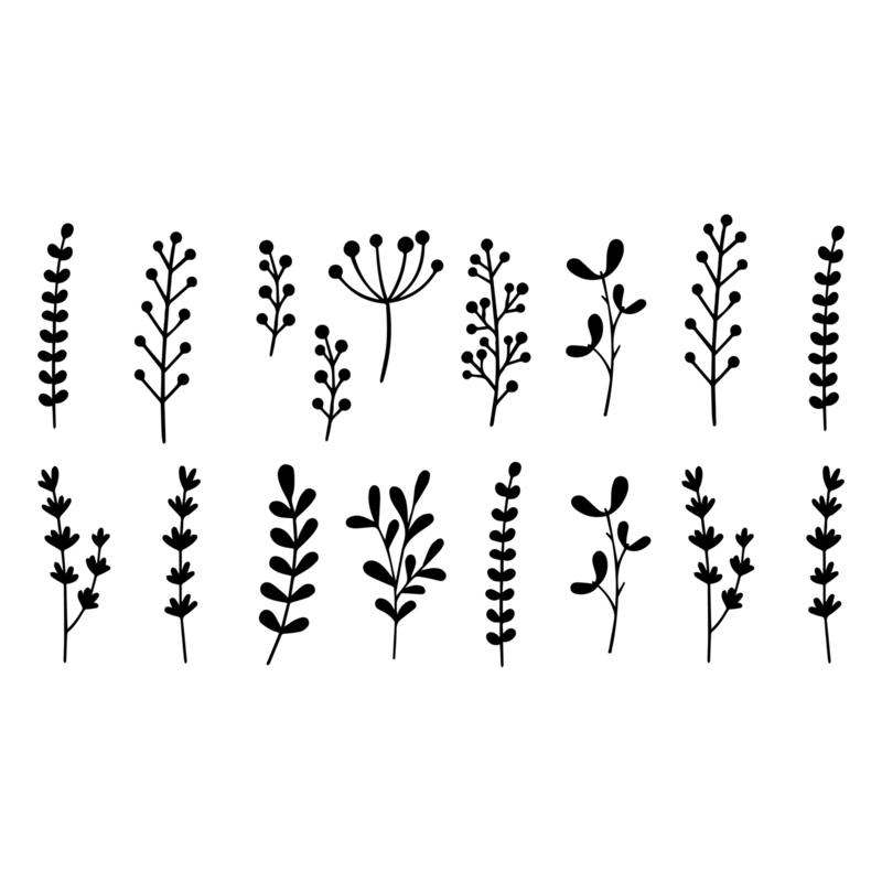 Botanisch: Blaadjes  & bessen mix