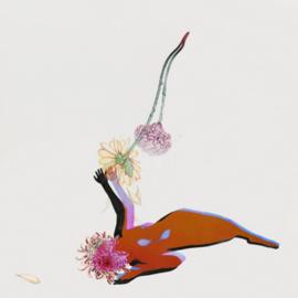 Future Islands - The Far Field CD