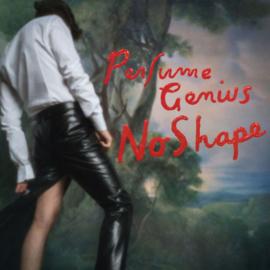 Perfume Genius - No Shape CD