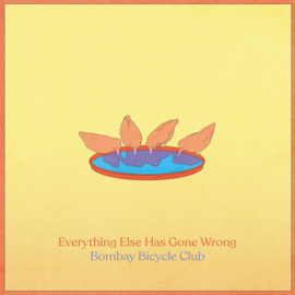 Bombay Bicycle club - Everything Else Has Gone Wrong CD