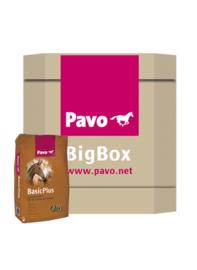Pavo BigBox BasicPlus
