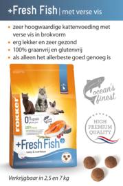 +Fresh Fish