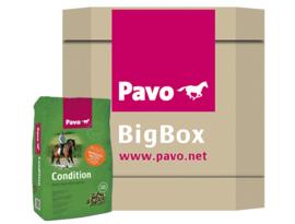 Pavo BigBox Condition
