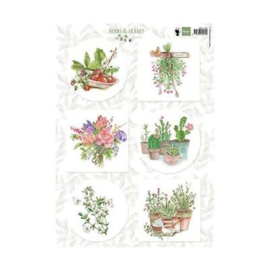 3D Marianne Design A4 Cardtoppers Sheet - Herbs & Leaves 2 EWK1255