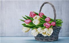 miniart crafts Tulips Bouquet Canvas 44x29 cm.