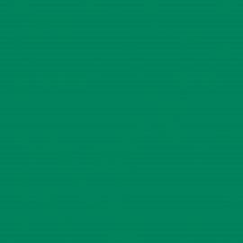 Intercoat Vinyl Green 3851  (30 cm x 1 meter)
