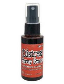 Ranger Distress Spray Stain  - CRACKLING CAMPFIRE TSS72348 Tim Holtz