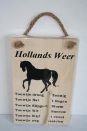 Hollands weerbericht> paard