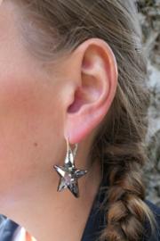 Zilveren Goudkleurige Oorbellen met Swarovski Elements Star Crystal Silver Night