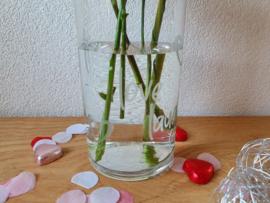 Vaas met deksel