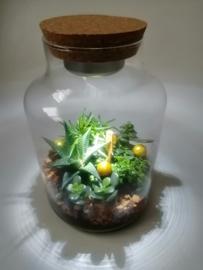 Vaas met licht