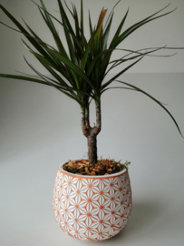 Fleurig plantenpotje