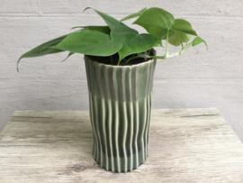 Vaas met plantje