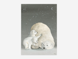 A5 IJsberen donker