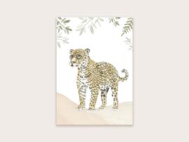 Ansichtkaart jaguar