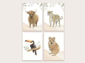 """Ansichtkaarten set """"in het wild"""" (4 stuks)"""