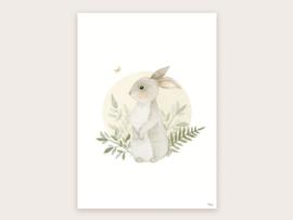 A3 konijntje