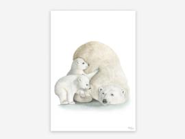 A5 ijsberen