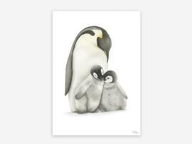 A5 pinguïns