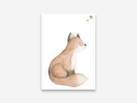Ansichtkaart vos
