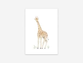 Ansichtkaart giraffe