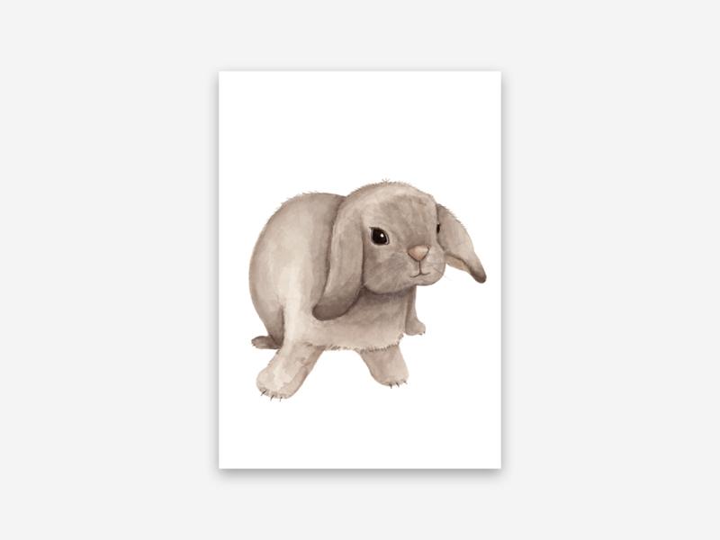 Ansichtkaart hangoor konijn