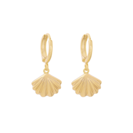 Shell | Oorbellen | Gold
