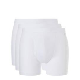 Boxer Basic Ten Cate