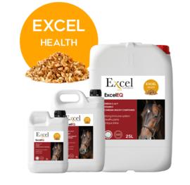 Excel EQ