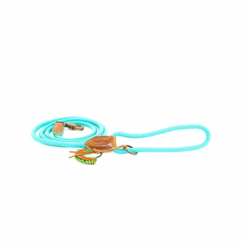 DWAM Turquoise Leiband