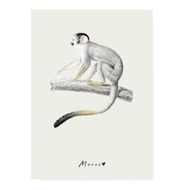 Kaart ''monkey''