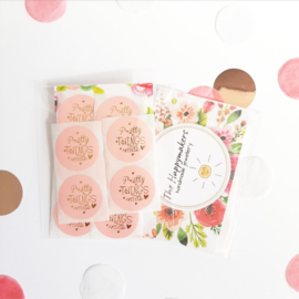 Stickers ''pretty things inside'' 10 stuks