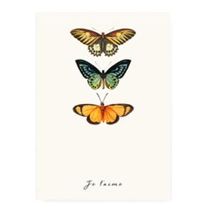 Kaart ''butterfly''