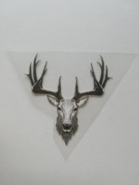 Hert 6x6cm