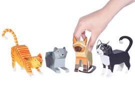 Pukaca - Cats